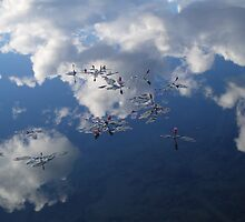 Flowers in the Clouds by Harv