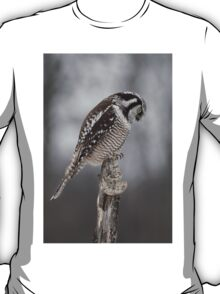 Northern Hawk Owl checks his claws T-Shirt