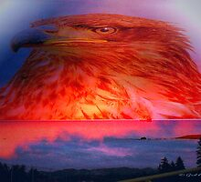 Phoenix by Gail Bridger