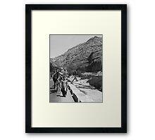 Walking the Camels Framed Print