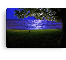 molly by the sea Canvas Print