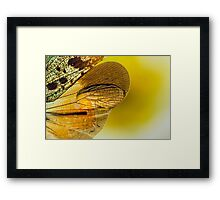 On the Wild Wing of Dawn Framed Print