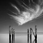 Forgotten Wharf by Luis Ferreiro