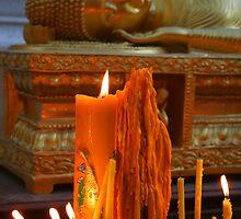 Devotion by tracyleephoto