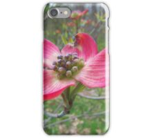 Red Dogwood iPhone Case/Skin