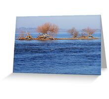 Islet Survivors Greeting Card