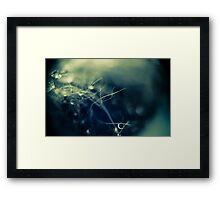 Drops on Wool Framed Print
