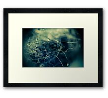 Drops on Wool 2 Framed Print