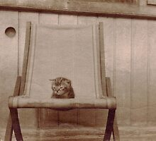 Vintage Kitten by Flo Smith