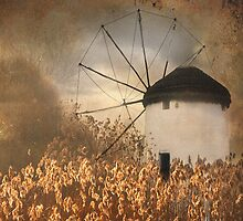 Mill and Reeds by Hans Kawitzki