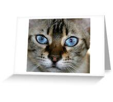 pretty blue 2 Greeting Card