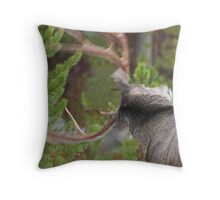 Shaking the Rain Off... featured on NPR Blog Throw Pillow