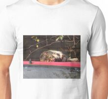 The Curious Cat Unisex T-Shirt