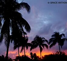 Miami Beach Sunset by Grace Anthony Zemsky