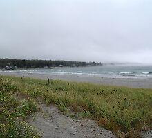 Summerville Beach by George Cousins