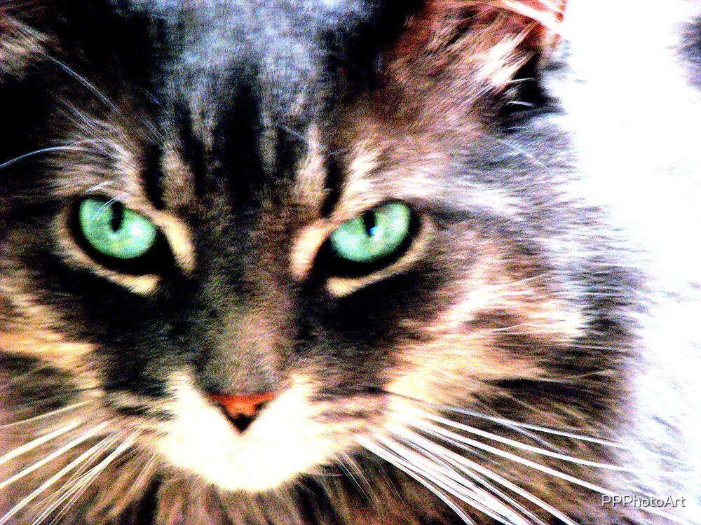 Alfie Green Eyes by PPPhotoArt