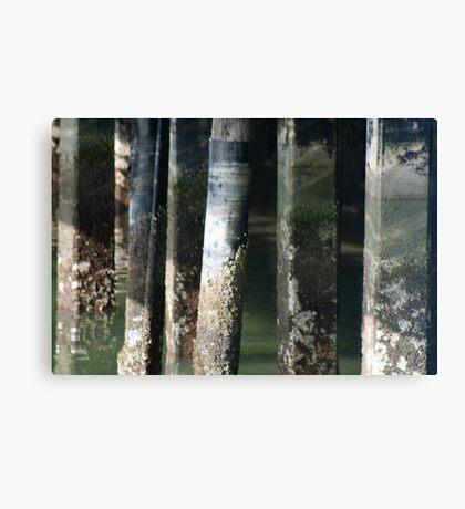 Cement Patina Canvas Print