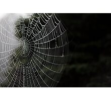 Foggy Web Photographic Print