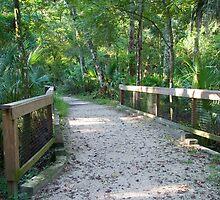 Florida Footpath by dmark3