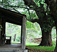 Gabby's Place - Yengo NSW by Bev Woodman