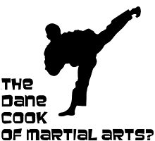 Karate? The Dane Cook of Martial Arts? by sajmae