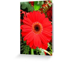 Red Flower Number Two Greeting Card