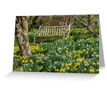 Graced by Daffodils Greeting Card