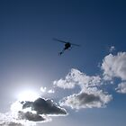 Silhouetted Flight by DJ Manning