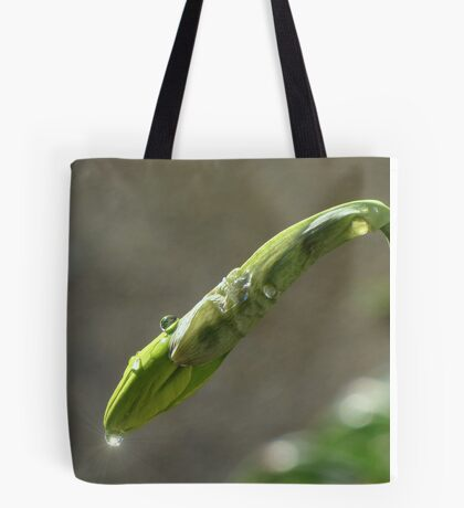 It rained last night Tote Bag