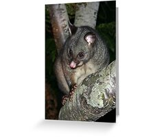 The other possum Greeting Card