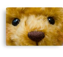 TeDdY's FaCe! Canvas Print