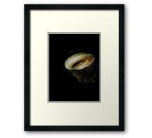Vincent Price's Doughnut Framed Print
