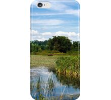The Perfect Summer Day iPhone Case/Skin