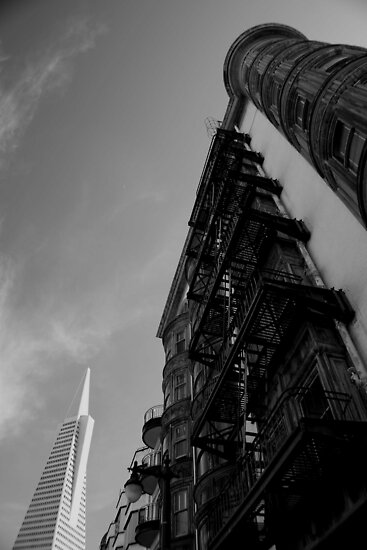 Transamerica Pyramid, San Francisco by Tyler  Core