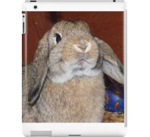 Brown Rabbit iPad Case/Skin