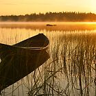Moment in the Finnish landscape by Veikko  Suikkanen