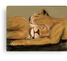 Big Cat Nap Canvas Print