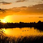 Golden Cheshire Sunset by Andy Grant