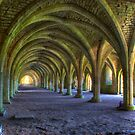 The Cellarium by Mark Thompson