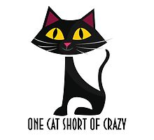 One Cat Short Of Crazy by soulwhispherer