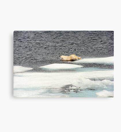 Prudhoe Bay Canvas Print
