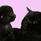 big kitty little kitty by paula cattermole artinapuddle