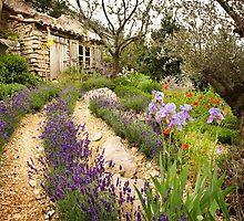 Provence  by bakuma