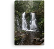 Small Creek, Tasmania Canvas Print