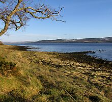 Looking south over the Beauly Firth by jacqi