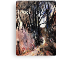 Walk Through The Woods Canvas Print