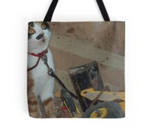 playing in the sandpit Tote Bag