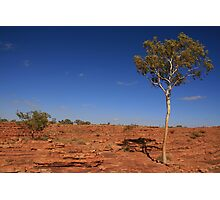 Kings Canyon, Northern Territory Photographic Print