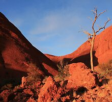 Kata Tjuta, Northern Territory by mapartstudio
