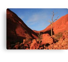 Kata Tjuta, Northern Territory Canvas Print